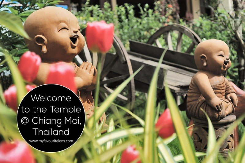 Welcome to the Temple @ Chiang Mai, Thailand | a photoblog from My Favourite Lens