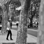 man and trees in zhongshan park china