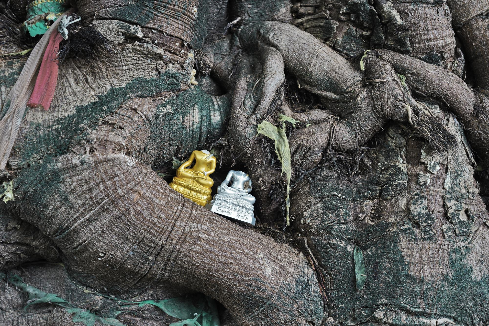 two headless buddhas under tree