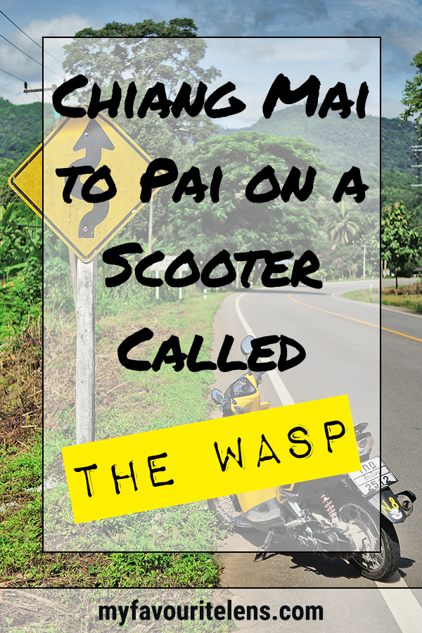 Thinking of riding a scooter from Chiang Mai to Pai? I did it on a yellow and black one affectionately known as the Wasp. Come read and be inspired!