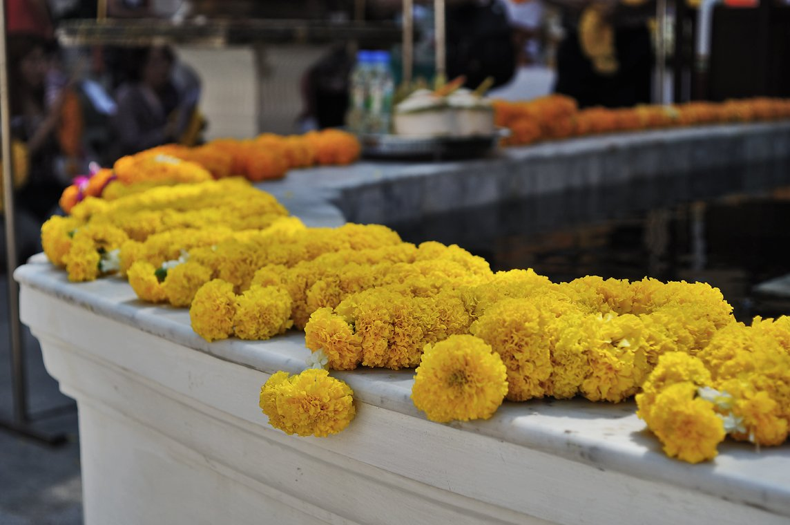 yellow buddhist flowers