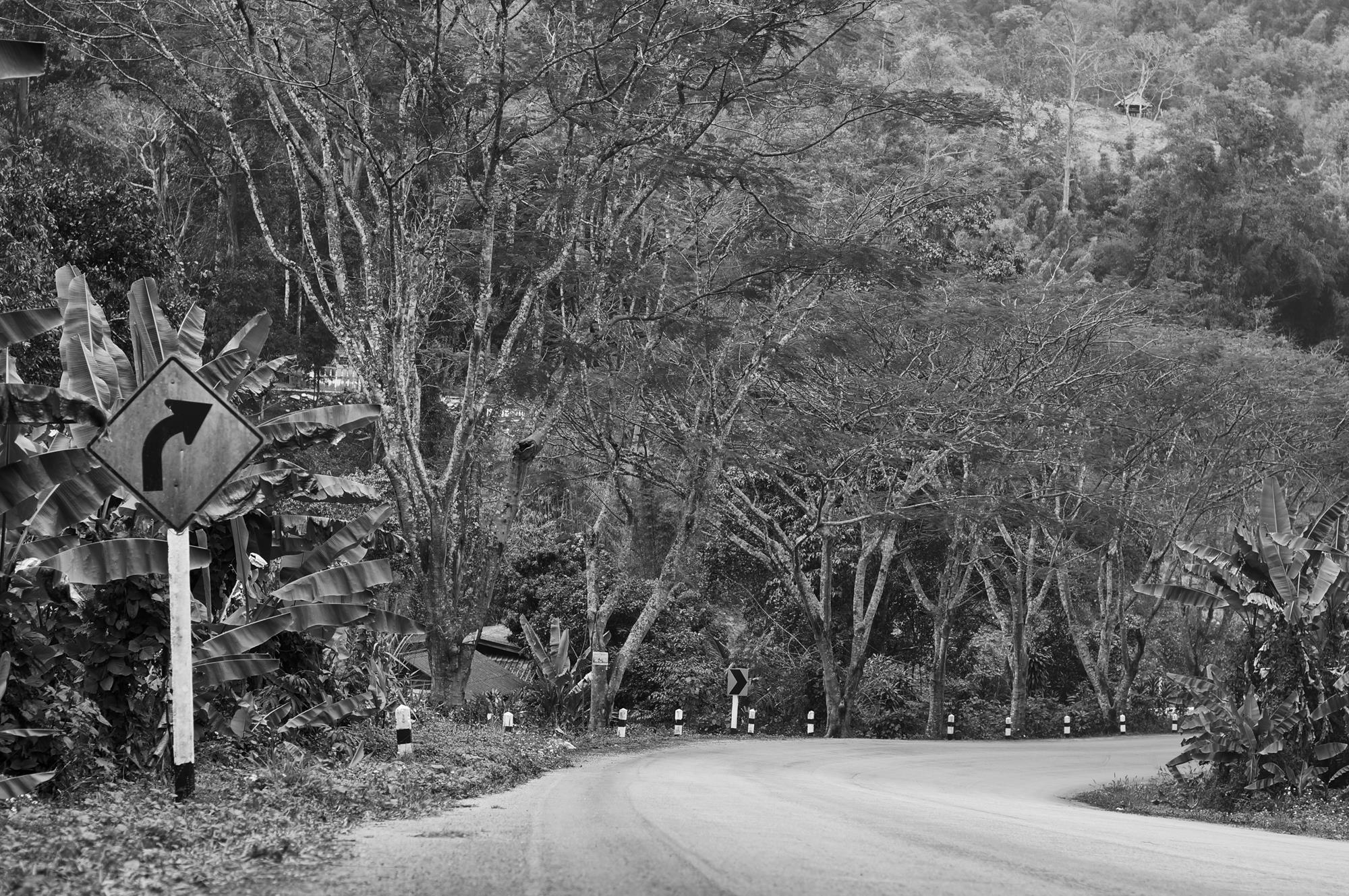 road chiang mai to pai