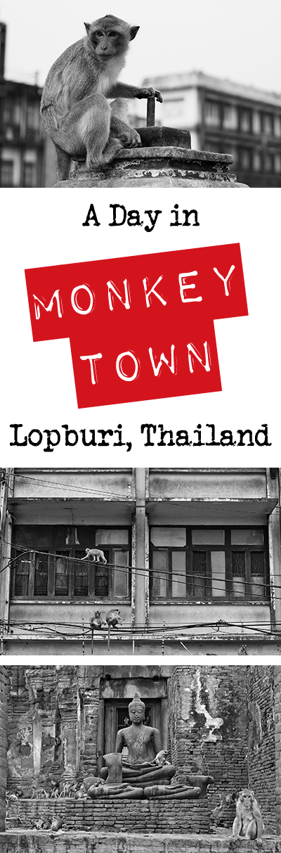 Lopburi, Thailand, is a small town overrun by monkeys. It's also a travel photographer's dream. Come see how I shot my day in Monkey Town and learn all about how you can make the most of yours too, from travel and accommodation advice to the best times to visit to catch the local festivals.