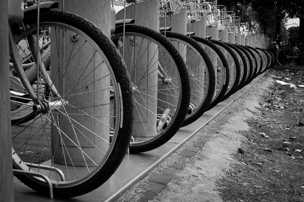 street-photography-bicycle-wheels