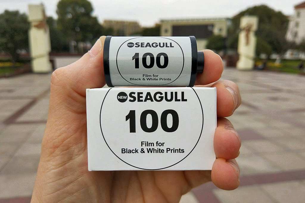 oriental-seagull-100-review-1